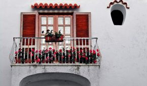 Миниатюра к статье С чего начать делать зимний сад на лоджии или балконе