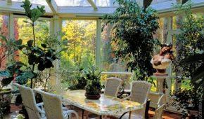 Миниатюра к статье Подбор растений для зимнего сада, правила, фитокомпозиции
