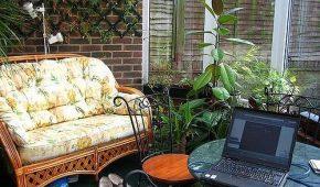 Миниатюра к статье Создаем зимний сад в маленькой квартире